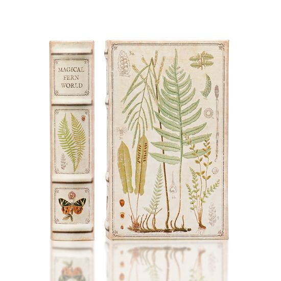 Magical Fern World - Book Box