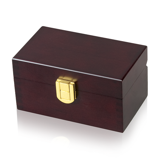 Small Memory Pet Urn - Brass Lock