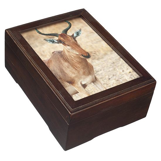 Photo Magnetic Box - Polish Wooden Box