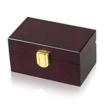 Small Memory Pet Urn - Brass Lock