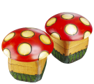Toadstool mushrooms detail