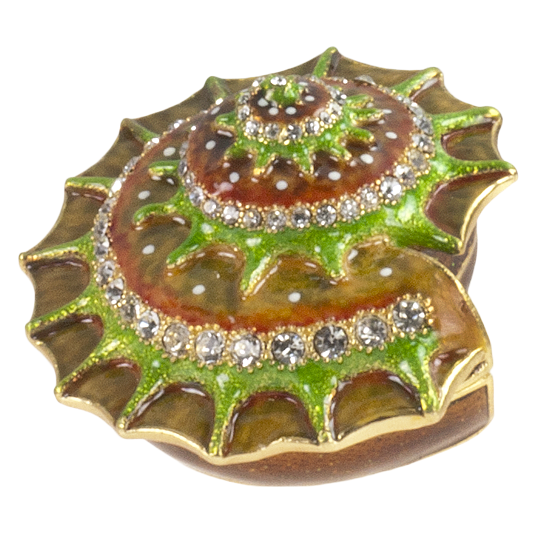 Spiral Shell - Enamel Box